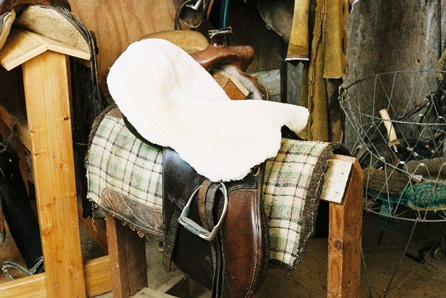 All Purpose / Dressage Seat Cover
