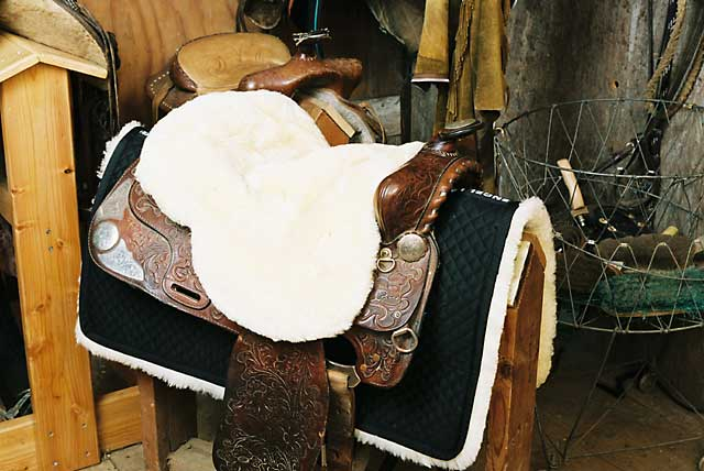 Standard Western Saddle Seat Cover