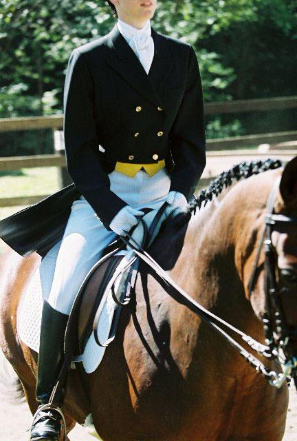 Dressage Saddle Blanket